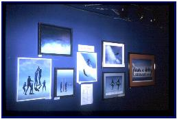 Permanent show in the Cousteau's Gallery in NSDH, Hawaii