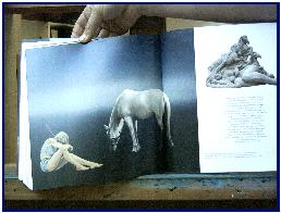 Pascal's painting published in book Femmes de Cheval