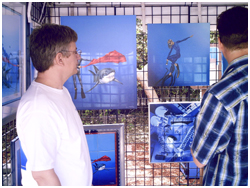 Pascal's exhibition and apearance 2008, Gumbo Limbo Boca Raton