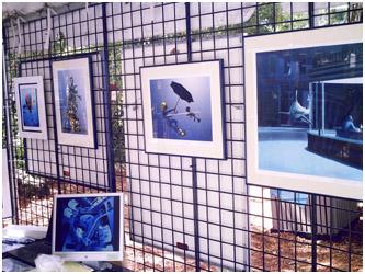Pascal's exhibition 2008, Gumbo Limbo Boca Raton