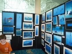 Blue Wild Expo 2010