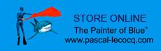 PASCAL LECOCQ STORE